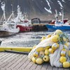 Announcement of Peer Reviewers for the Re-Assessment of the Icelandic Haddock & Saithe Commercial Fisheries